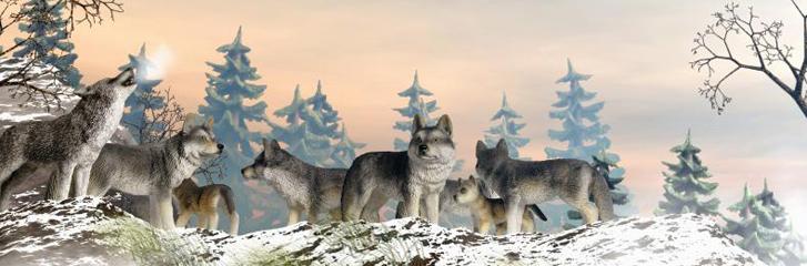 Schleich Animal Figures